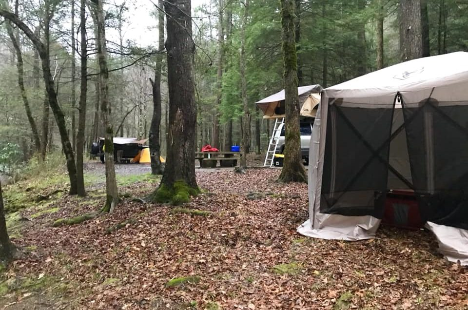 Where To Go (Tennessee) :  Lost Creek Campground